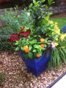 Glazed Container Garden