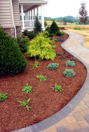 Tip 1 For A Tidy Garden Refreshing Your Mulch Beds